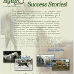 Horses:  Rescue Horses Success Story on EquiLix