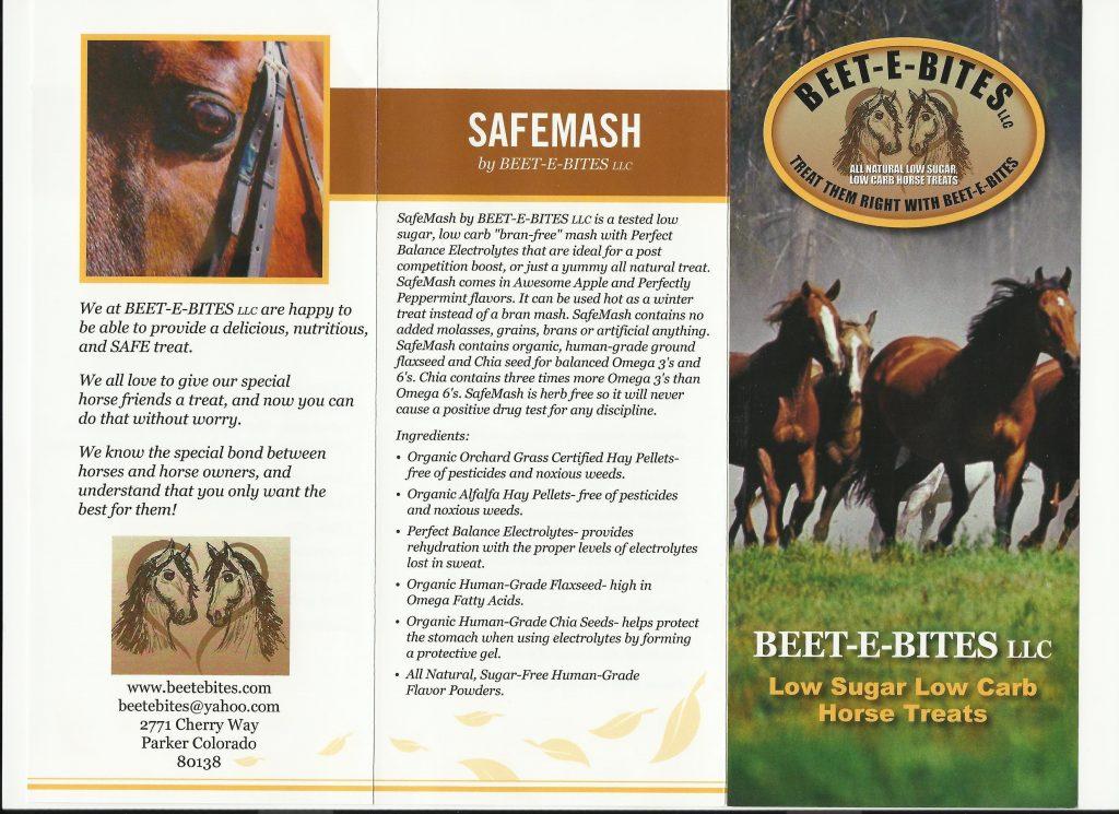 safemashbrochure