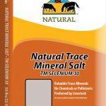 Redmond – Trace Mineral Selenium 30 Loose Salt