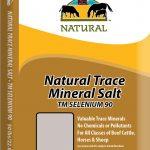 Redmond – Trace Mineral Selenium 90 Loose Salt