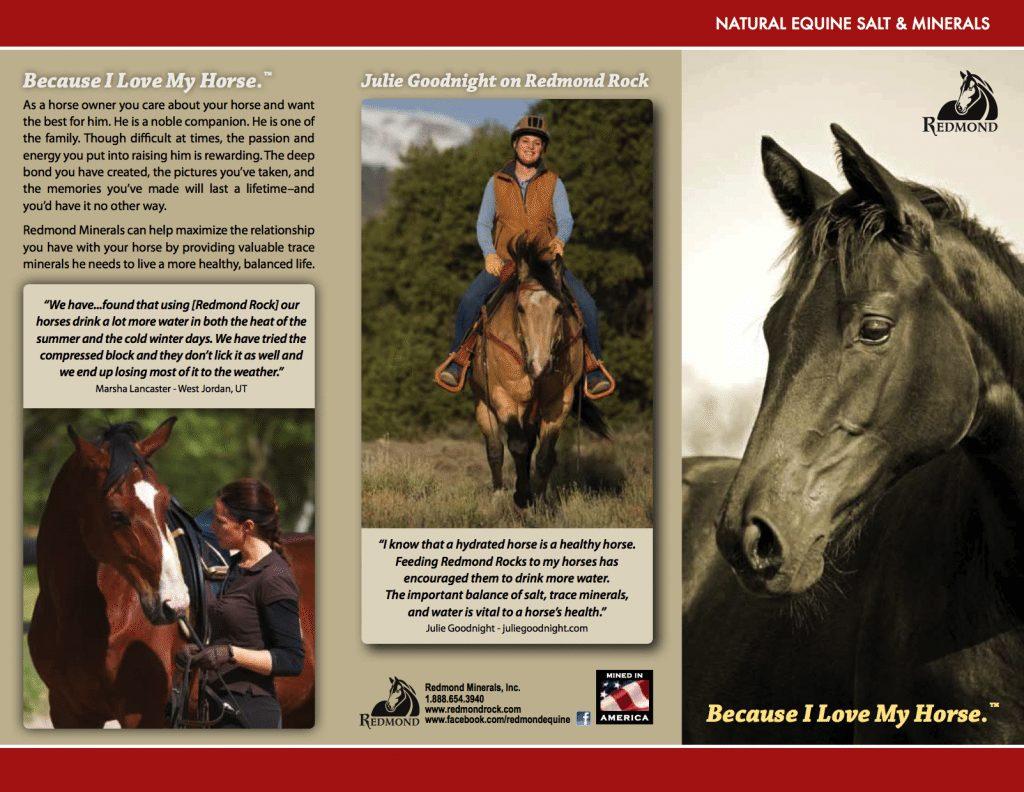 Redmond Rock Brochure