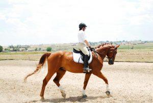 fritz-una-schade-riding