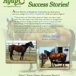 Horses:  Supporting overall health with SweetPro's EquiPride