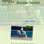 Horses: Diane Steele Mustang Success Story